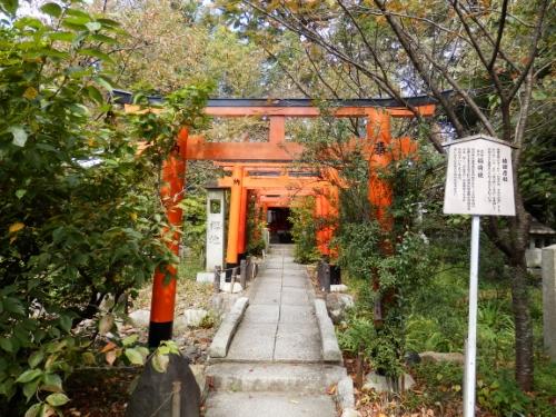 平野神社 (8)_resized