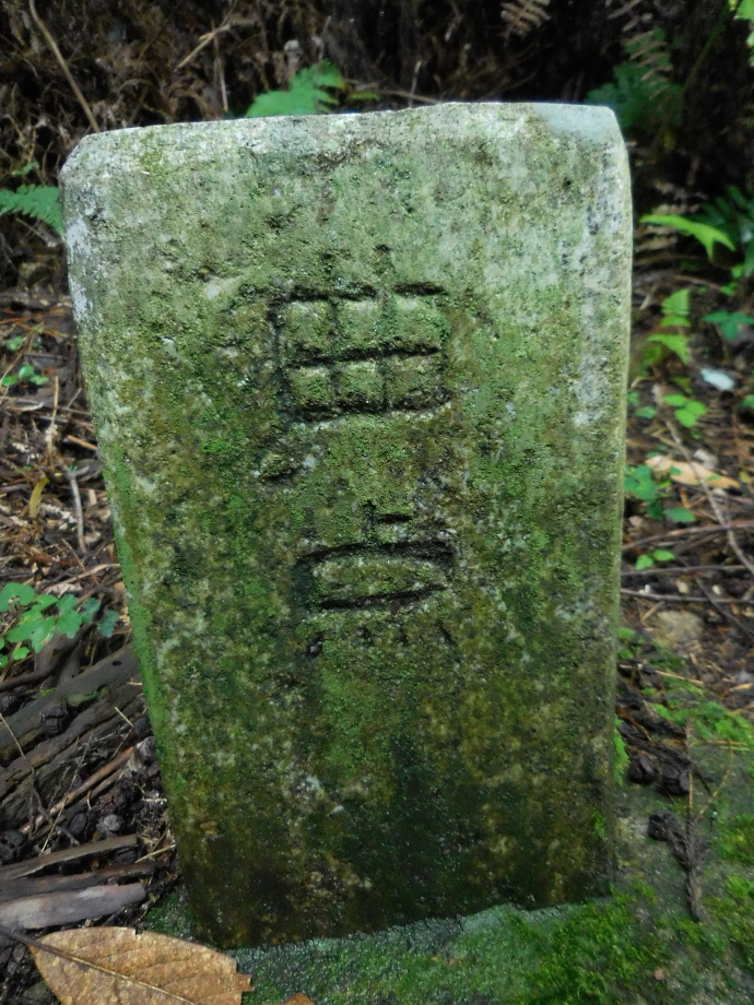 150829熊野古道 (2)