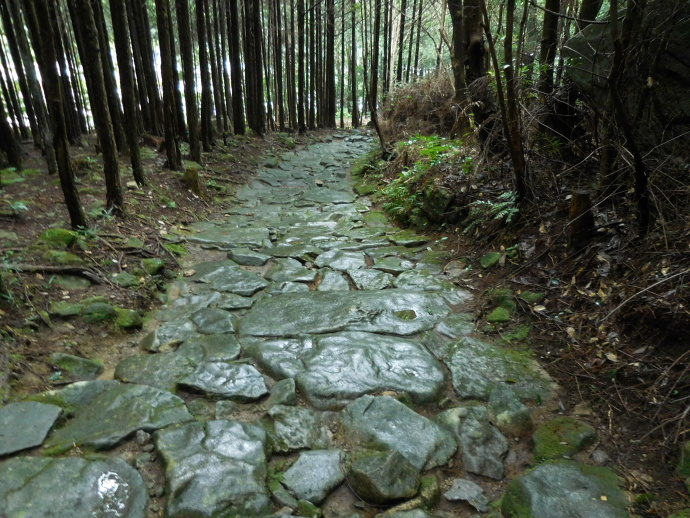 150829石畳 (2)