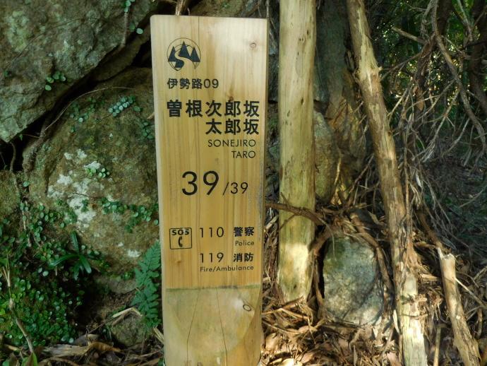 151018古道 (11)