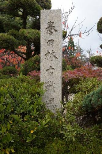 3誉田古戦場 (800x1200)