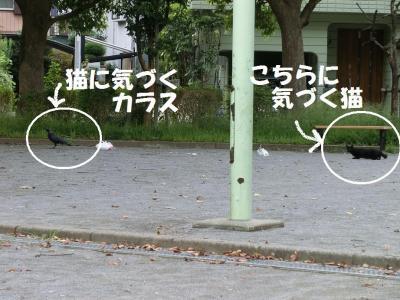 015繝シ菫ョ豁」_convert_20150906131314