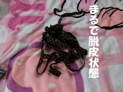 004繝シ菫ョ豁」_convert_20150913202314