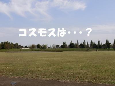 008繝シ菫ョ豁」_convert_20151011213652