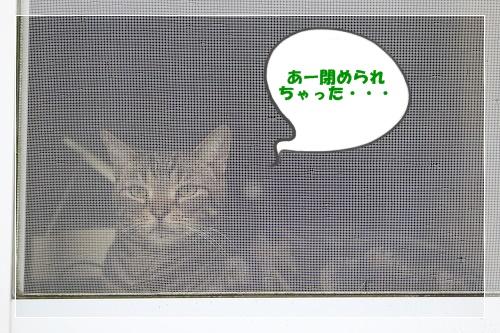 s-150920IMG_7575.jpg
