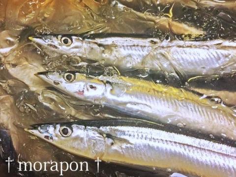 150927 秋刀魚で月見酒-2