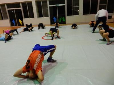 レスリング練習 008