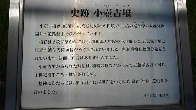 DSC01512 - コピー