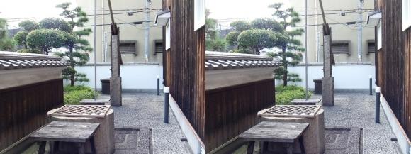 菊正宗酒蔵記念館⑳(平行法)