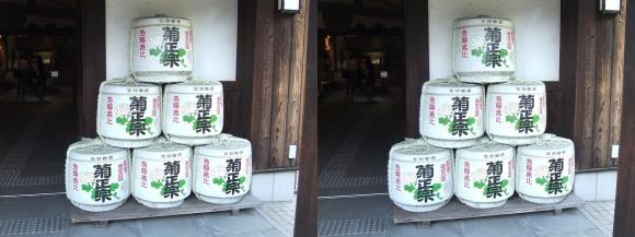 菊正宗酒蔵記念館④(平行法)