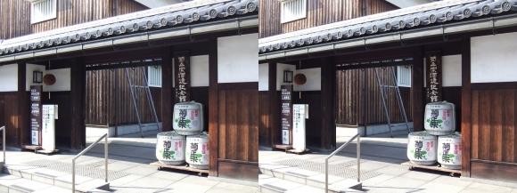 菊正宗酒蔵記念館③(交差法)