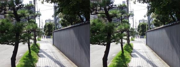 魚崎南町(平行法)