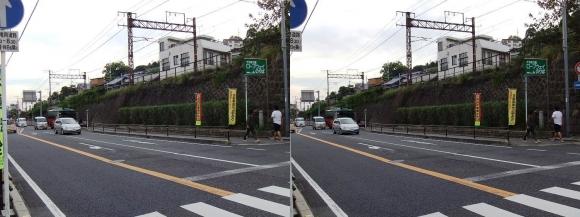 国道2号 千光寺公園 ロープウェイのりば入口(交差法)