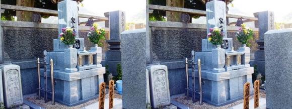 お墓(平行法)