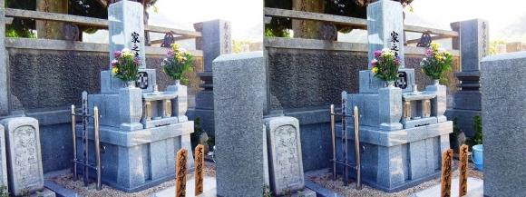 お墓(交差法)