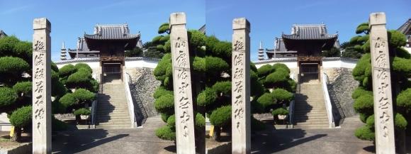 重楽寺①(交差法)