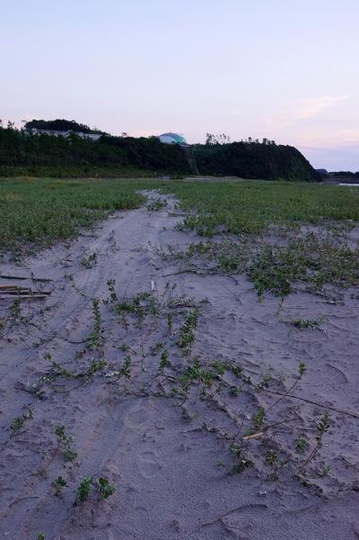 201508川内原発