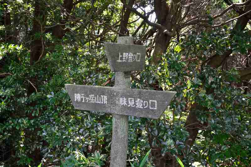 障子ヶ岳 (5)