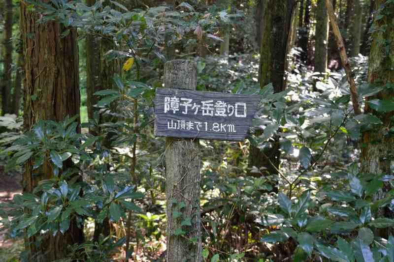 障子ヶ岳 (2)