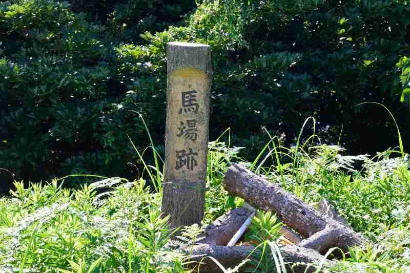 障子ヶ岳 (8)