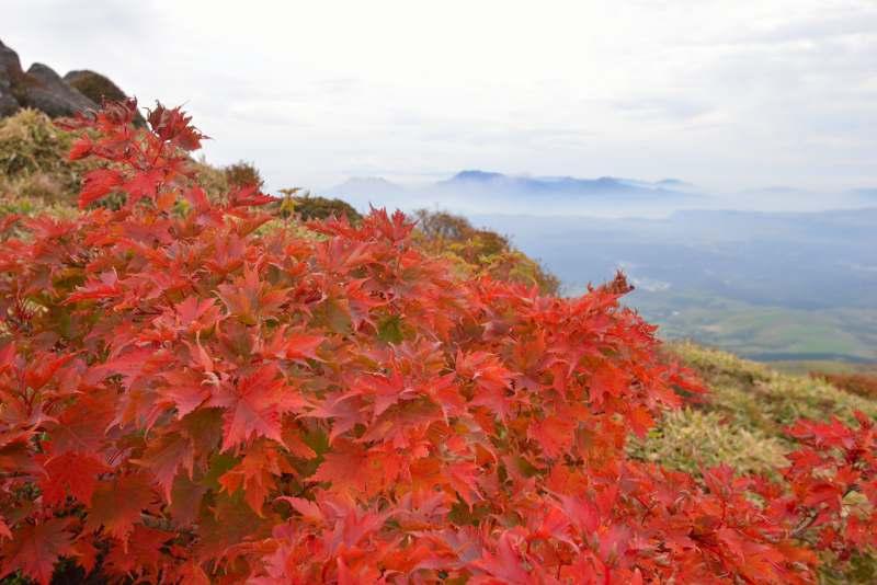 三俣山~扇ヶ鼻 (77)