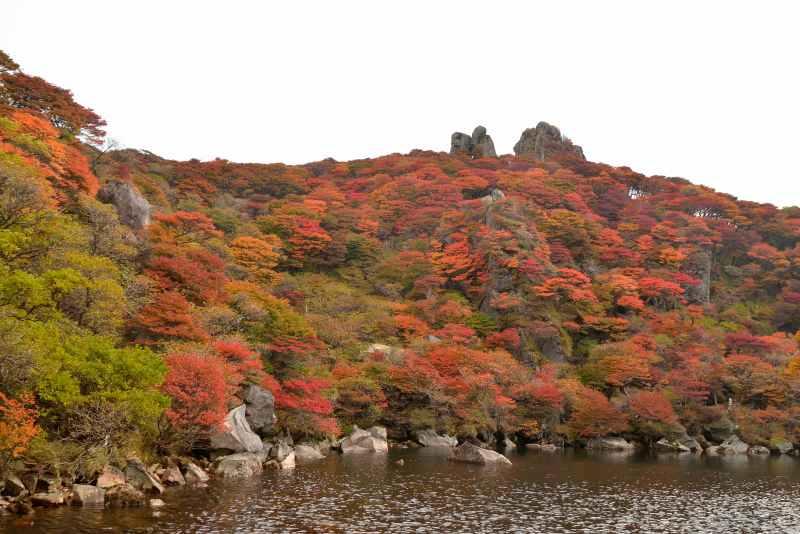 大船山 (11)