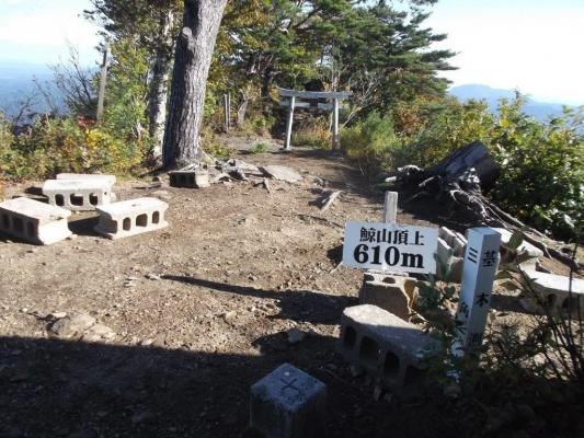 広々とした鯨山神社のある山頂