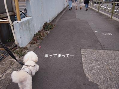 151017_7.jpg