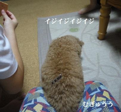 P1410685(1) - コピー
