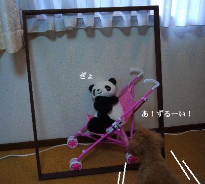 P1400851(1).jpg