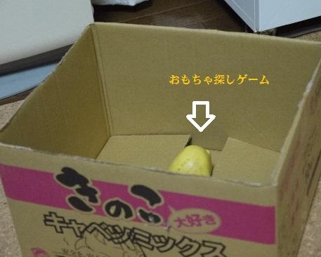 P1410481(1).jpg