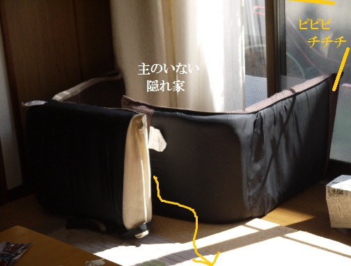 P1420095(1).jpg