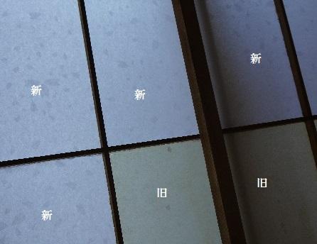 P1420661(1).jpg
