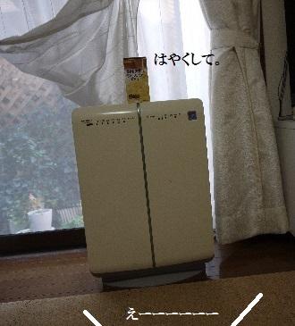 P1420676(1).jpg