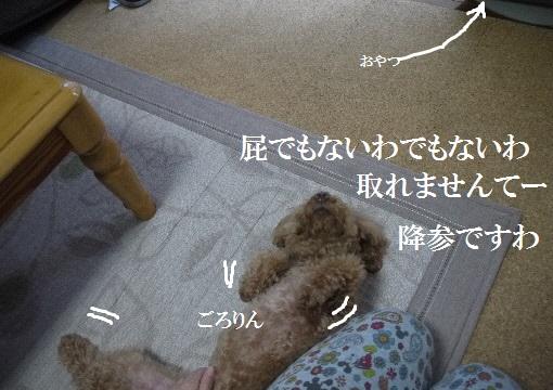 P1420686(1).jpg