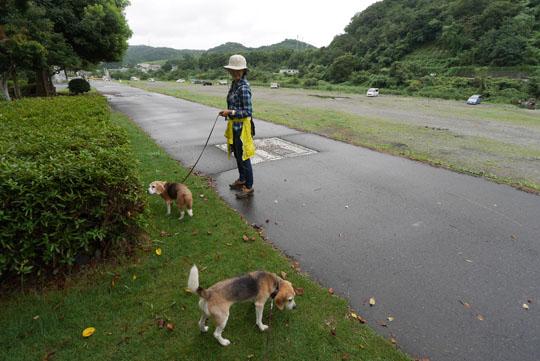 006お散歩
