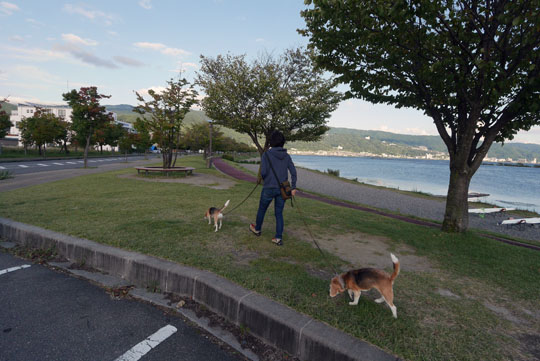 114諏訪湖散歩