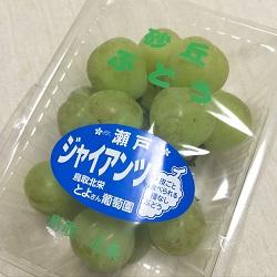 20151004totorimeibutu1.jpg
