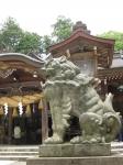 白山比咩神社01-24