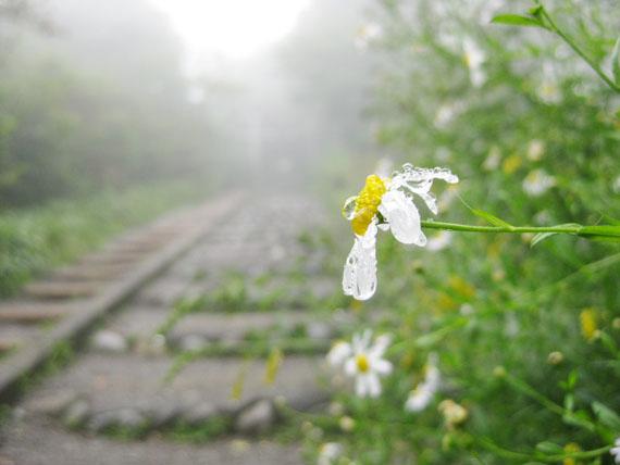 冨士山神社26