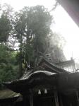 榛名神社02-11