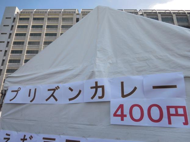 009-pu-5.jpg