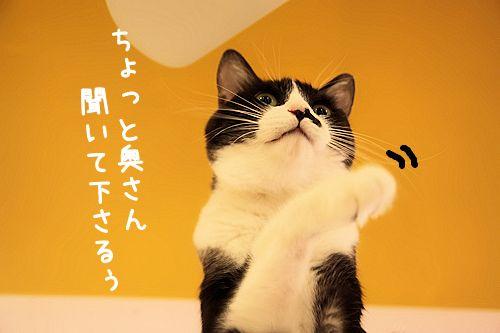 黒丸20151018-02
