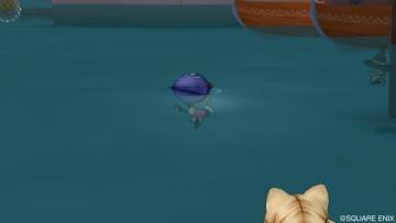 服着て泳いでる人が居るのですが・・・