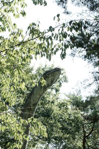 20150920恐竜3