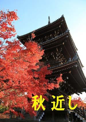 201509 秋改装ブログ2