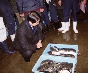 2008安倍元総理