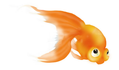金魚002