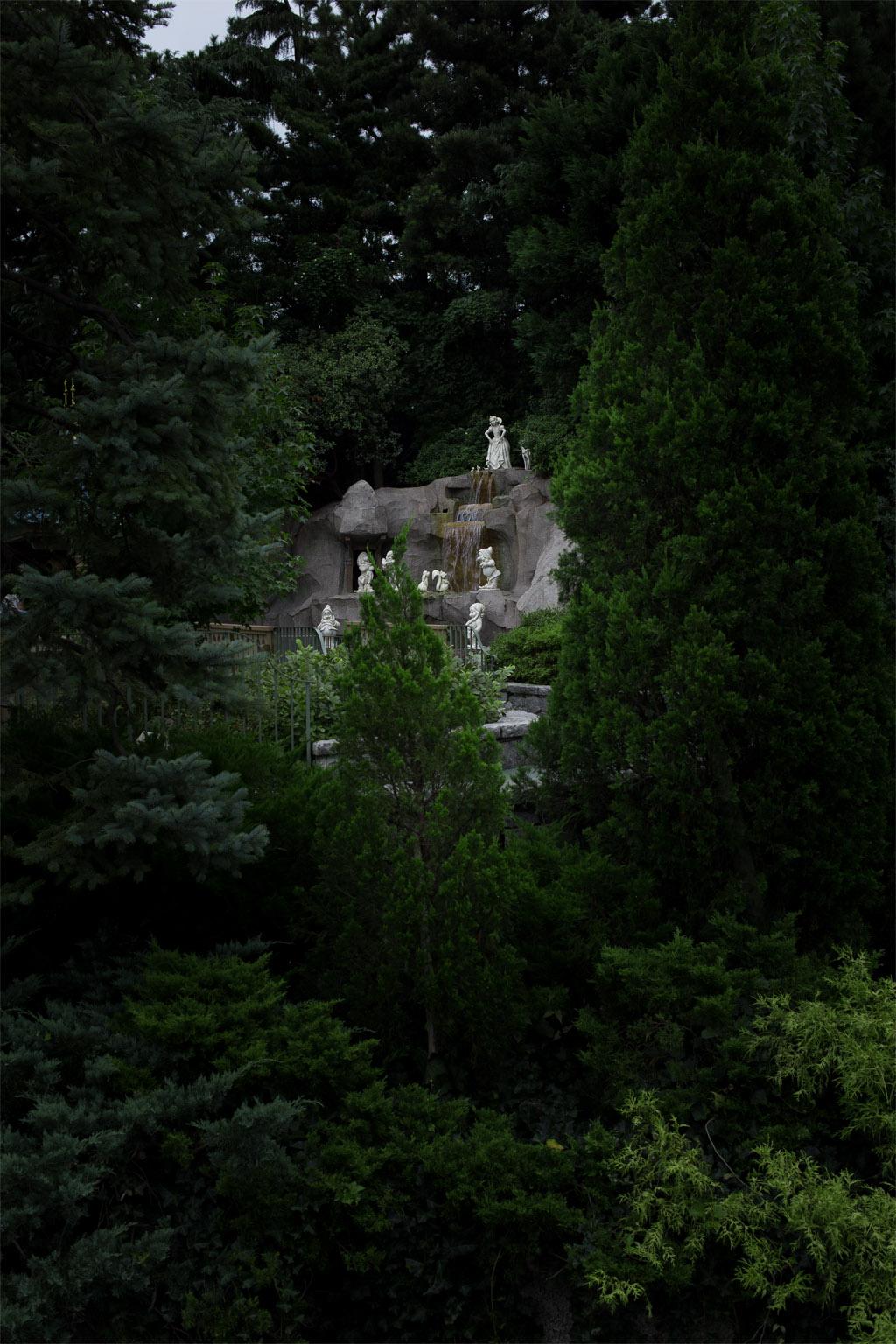 森の中(白雪姫)