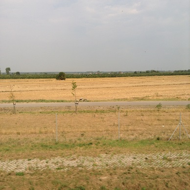 ポーランドの平原